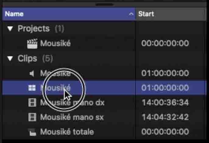 multicam clip nel browser di Final Cut Pro x