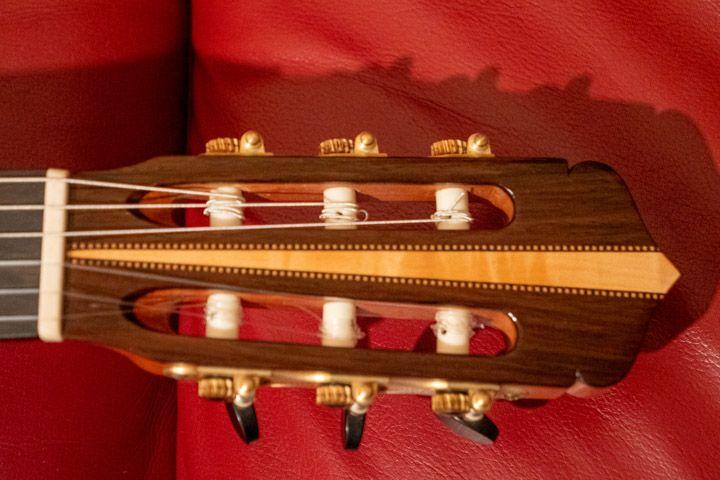 Paletta della chitarra Guagliardo